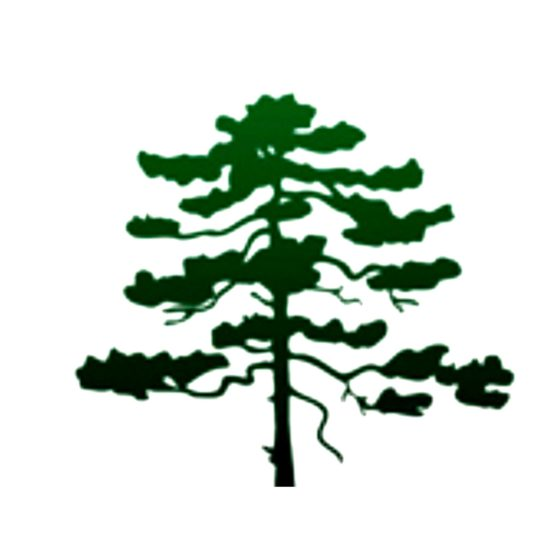 Pine Island Customs Site Icon
